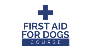 Pet Education and Training Launches on line First Aid for Dogs Course