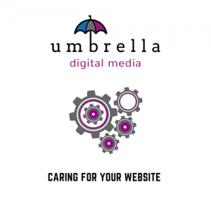 Look After Your Website, Look After Your Business