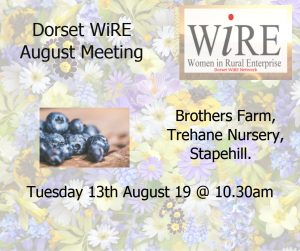 Dorset WiRE Network – August 19 Event