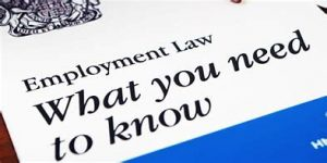My Top 9 'SME' Employment Law updates for 2018