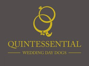 Quintessential Wedding Day Dogs