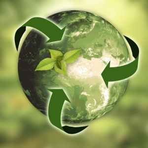 """Sustainability: it's everybody's business– WiRE National """"Network Online"""" Event – 19th May 2021"""